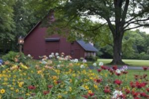 barn_with_flowers-300x190